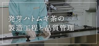 発芽ハトムギ茶の 製造工程と品質管理